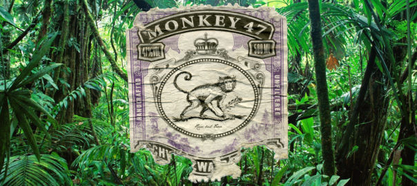 Print of a monkey on a jungle background