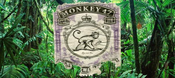 Prent van een aap op een achtergrond van jungle